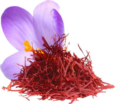 nhụy hoa nghệ tây tashrifat 100% iranian saffron